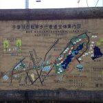 多摩湖自転車道は東京のポタリングに最適