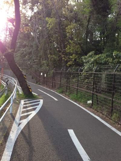 多摩湖自転車道歩道