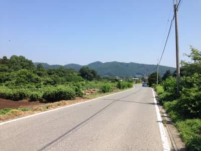寄居町田舎道