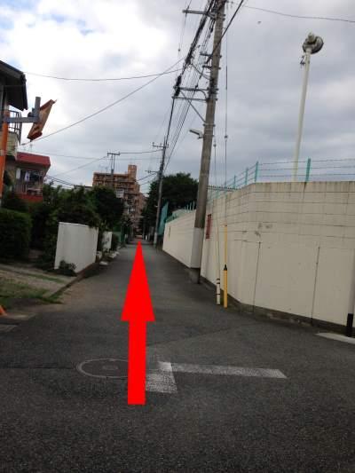 多摩川サイクリングコース